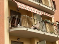 Torino: bellissimo appartamento